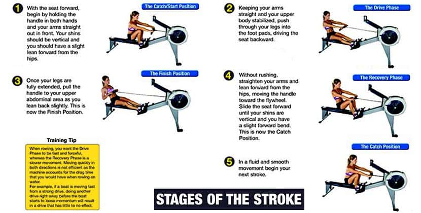 Stages of rowing machine stroke diagram - blog